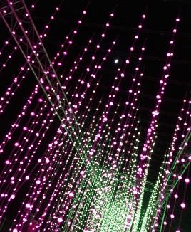Blenheim lights
